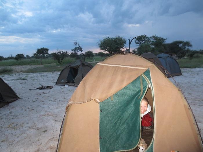 Tältet som är vårt boende den här veckan. Här i vildmarken i Botswana .