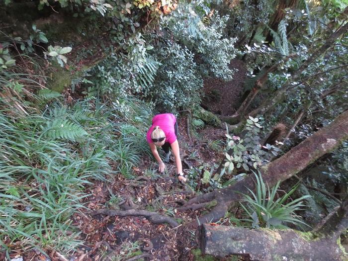 Elise tar sig an klättringen uppför Mt. Fox