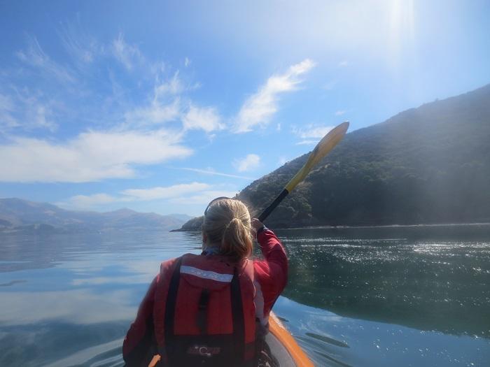 Sjukt fin kayak-tur i Akaroa bland delfiner!