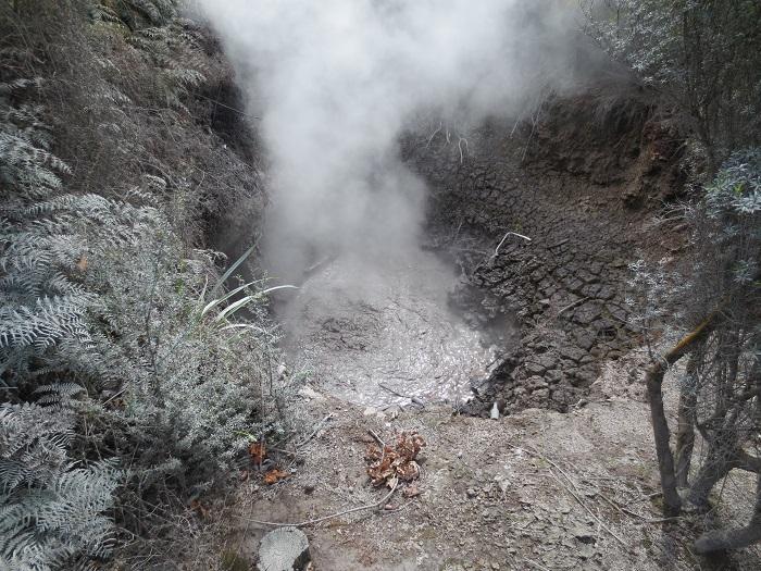 En kokande källa utanför Lake Taupo